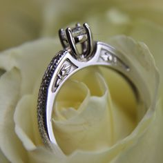 Celtic Wedding Rings, Jewelry, Jewels, Schmuck, Jewerly, Jewelery, Jewlery, Fine Jewelry, Celtic Wedding Bands