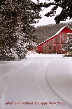 Christmas in the Country by TumblingRun, via Flickr
