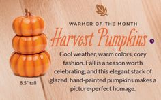 NEW Scentsy Harvest Pumpkin Warmer- available October 1, 2016. Scentsy Fall Winter 2016-2017