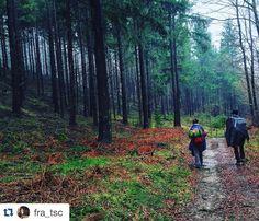 Grazie a @fra_tsc per aver condiviso con noi questa splendida foto scattata lungo la #ViadegliDei!  Se anche voi volete cimentarvi sul nostro sito trovate le nostre proposte organizzate in aprile e in maggio: http://ift.tt/234NLBQ  #BuonCammino!  by appennino_slow