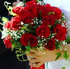 Beautiful Red Roses Flower Delivery Flowers Bouquets
