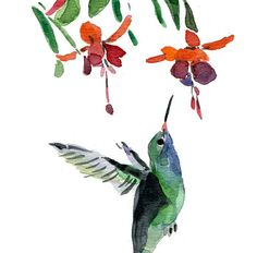 Humming bird no 2 Print of  watercolor painting by TheJoyofColor, $21.00