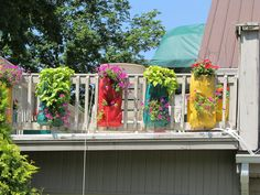 Bring color on to your balcony and enjoy it all summer