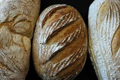 Sourdough bread making is a fine craft, so learn how from a true artisan. Bread Making, How To Make Bread, Rustic Bread, Bread Bowls, Sourdough Bread, Scones, Wine Recipes, Breads, Artisan