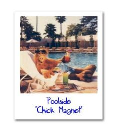 Alf by the pool. |Pinned from PinTo for iPad|
