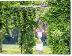 Jenny Rainbow Fine Art Photography Acrylic Print featuring the photograph Wisteria Pergola In Park Of De Haar Castle by Jenny Rainbow Back Garden Landscape Design, Fine Art Photography, Travel Photography, Small Yard Design, Wisteria Pergola, Art Prints For Home, Pergola With Roof, Thing 1, Back Gardens