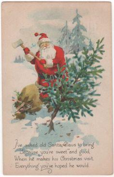 the prefect tree for santa