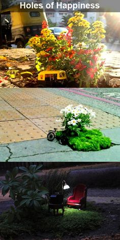 Lovely! Aren't they?  These are miniature gardens by guerrilla gardener Steve Wheen. He creates them in potholes turning them into little places of wonder :)