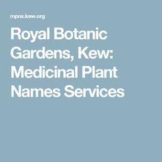 Royal Botanic Gardens, Kew: Medicinal Plant Names Services