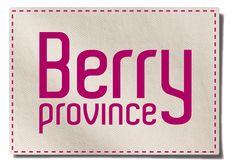 """Logo de la marque """"Berry Province"""", qui agit au service du développement touristique du territoire pilotée par la région Centre et les départements du Cher et de l'Indre"""