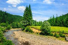 wild mountain river near forest #68271362 - obrazy na płótnie, Fototapety na wymiar, Obrazy na ścianę