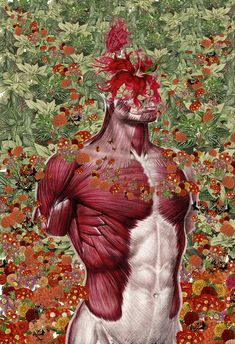 Anatomical Collages by Travis Bedel mixed media collage anatomy Art Du Collage, Collage Artists, Anatomy Art, Human Anatomy, Travis Bedel, Illustration Arte, Colossal Art, Art Inspo, Contemporary Art