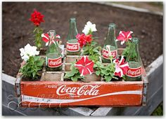 Old Coke Crate Planter....just scored one for $5 at an estate sale!!!