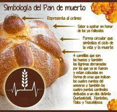 "Simbologia del pan de muerto - Mexico ""Symbolism of break of the dead. Spanish Lessons, Teaching Spanish, Spanish Classroom, Spanish Grammar, Spanish Activities, Spanish Teacher, English Vocabulary, Classroom Ideas, Mexican Bread"