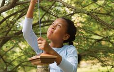 How to Build a Bird Feeder | This Old House https://www.thisoldhouse.com/how-to/how-to-build-bird-feeder
