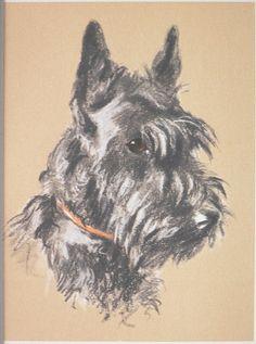 SCOTTISH TERRIER SCOTTIE dog Vintage mounted 1939 by Hollysprints