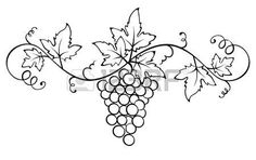 Illustration of Set design elements -- grape with stamp vector art, clipart and stock vectors. Grape Drawing, Vine Drawing, Mandala Drawing, Stencil Patterns, Embroidery Patterns, Ivana, Leaf Outline, Vine Tattoos, Leaf Stencil