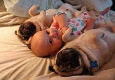 30 Fotos lindas de niños y animales | Animales y mascotas Fotos | La pata más lindo