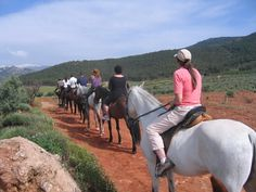 Spanish and horseback riding in Granada, Andalusia with Escuela Montalbán.