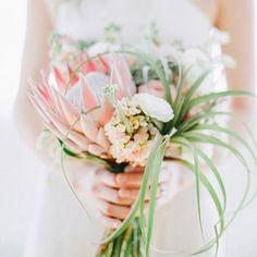 air plant wedding bouquet - Google Search