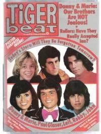 tiger beat magazine 1976 facebook - Google Search