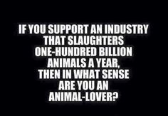 think about this….make the connection…stop the hypocrisy…an animal is an animal is an animal…no difference! oh, by the way people are animals too…think about it... Vegan Facts, Vegan Memes, Vegan Quotes, Vegan Humor, Why Vegan, Vegan Vegetarian, Vegetarian Quotes, Reasons To Be Vegan, Vegan Animals