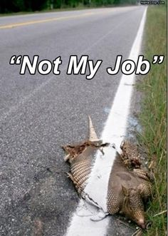 haha this is not funny lol What Is Laziness, Eyes Of Texas, Cool Pictures, Funny Pictures, Funny Pics, Thursday Humor, Moving To Texas, Loving Texas, You Had One Job