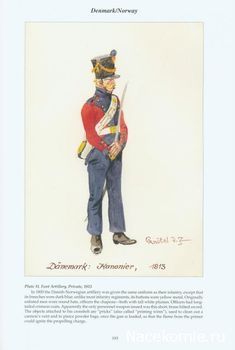 Best Uniform - Page 186 - Armchair General and HistoryNet The Best Forums in… Best Uniforms, Military Uniforms, First French Empire, Austrian Empire, Napoleonic Wars, American Revolution, Military History, Norway, 19th Century