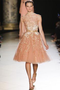 Sfilata Elie Saab Paris - Alta Moda Autunno-Inverno 2012-13 - Vogue