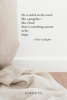 Congratulations to Claire Gallagher for winning our Poet of the Month contest for October 2020! You can read her entire poem by clicking the pin. If you'd like to learn more about getting involved with #pspoets, browse our website and feel free to reach out! Writing Prompts Poetry, Poetry Contests, Spoken Word, Writing Activities, Creative Writing, Claire, Affirmations, Congratulations, Poems