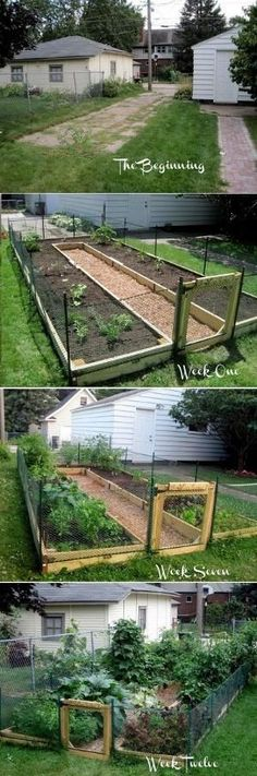 Learn How to Build A U-Shaped Raised Garden Bed by janine