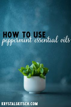 Essential oils have great benefits, but do you know what exactly to use them for? Here's 10 Uses for Peppermint Oil! It's my FAVORITE oil to use!