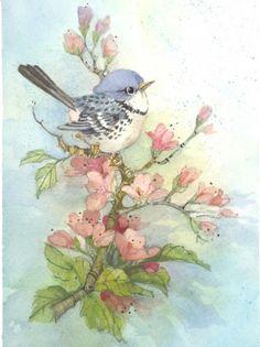 Spring Perch