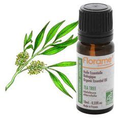 20 Modi Eccezionali di Usare l'Olio dell'Albero del Té (Tea Tree)