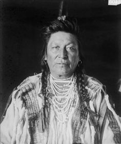 Chief Yshidiapas or Aleck-shea-ahoos or Plenty Coups - Crow