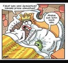 – Fakat ben seni öpmüştüm? Yakışıklı prens olmuştun? + Akşam çok içtin kızım sen #karikatür #mizah #matrak #komik #espri