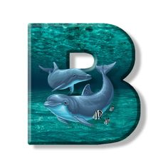 Buchstabe - Letter B Phone Backgrounds, Wallpaper Backgrounds, Letter B, Dolphins, Quotations, Fonts, Monogram, Stickers, Business