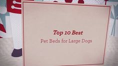 Top 10 Best Pet Beds for Large Dogs