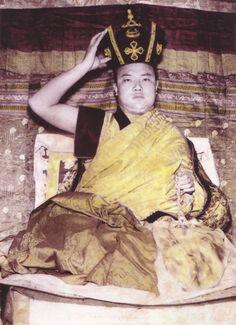 H.H. the 16th Karmapa Rangjung Rigpai Dorje