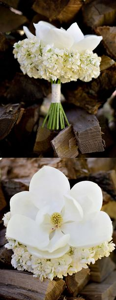 #White #Magnolia #Bouquet LOVE THIS