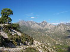 National Park, near Competa, Andalucia, Spain