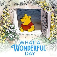 A wonderful, blustery day.