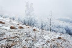 Ukraine. Carpathians. Dzembronya. From the series Frosty morning by architecturalphotographer #Landscapes #Landscapephotography #Nature #Travel #photography #pictureoftheday #photooftheday #photooftheweek #trending #trendingnow #picoftheday #picoftheweek