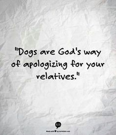 Dogs are God's way of....