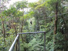 Ziplining at Selvatura Adventure Park in the Monteverde Cloud Forest in Costa Rica!    http://selvatura.com/tours-activities/zip-line