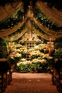 32 Colorful Garden Wedding Ideas For Your Special Day – VIs-Wed 2020 – Garden Hochzeit 2020 Colorful Garden, Tropical Garden, Tropical Flowers, St Louis, Wedding Themes, Wedding Decorations, Wedding Ideas, Garden Wedding, Dream Wedding