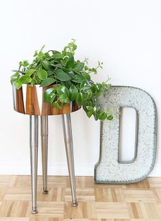 DIY Modern Planter from a Wooden Salad Bowl | Hello Lidy for Curbly