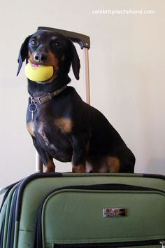 Are you sure you want to leave without me?