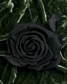 picturesofblackflowers - Google Search