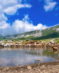ABRUZZO Enjoying Italy - Campo Imperatore in the province of L'Aquila (Italy)  - Godiamoci l'Italia con un paesaggio pittoresco al Campo Imperatore in provincia di L'Aquila nel cuore del massiccio del Gran Sasso d'Italia e all'interno del Parco nazionale del Gran Sasso e Monti della Laga.  - Photo by @dino_presciutti _ Tag your best photos with #yallersitalia and follow us to be featured - #green #panoramicviews #gransasso #laquila #abruzzo #campoimperatore #parconazionaledabruzzo #monday…